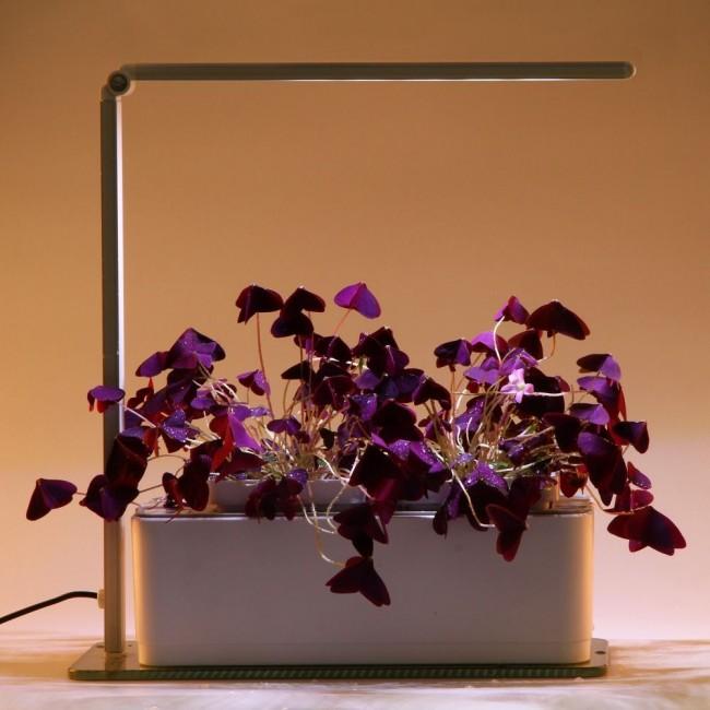 алиэкспресс подсветка для комнатных растений