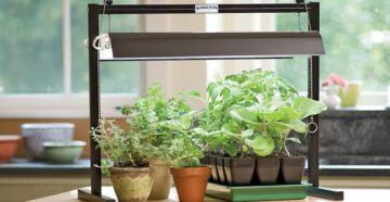 подсветка для комнатных растений