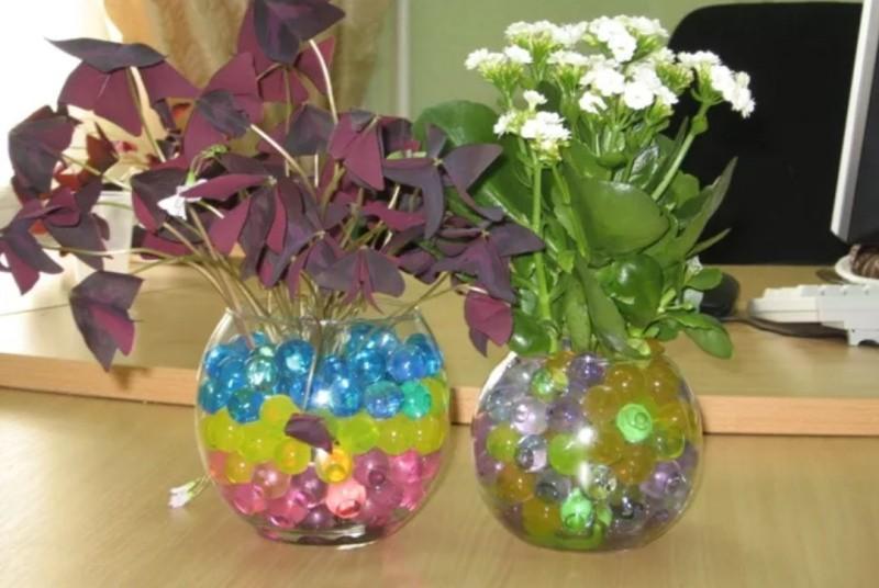 Гидрогель для цветов фото