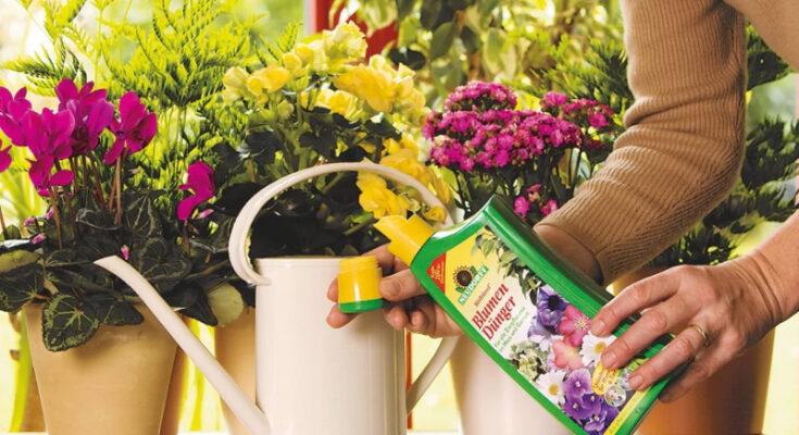 Жидкое удобрение для цветов