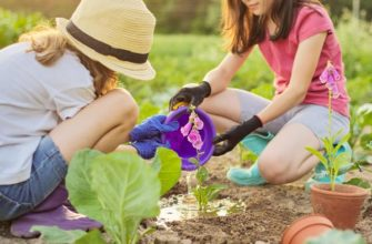 Лучшие растения для маленьких садоводов