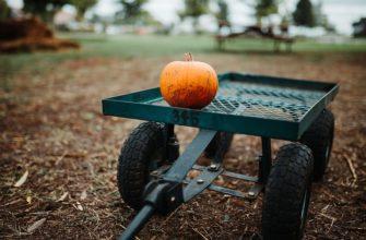 Обработка и подготовка земли для рассады
