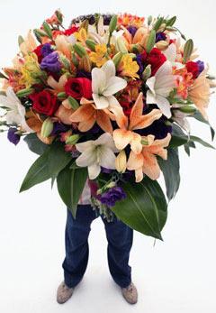 Цветы флегматикам
