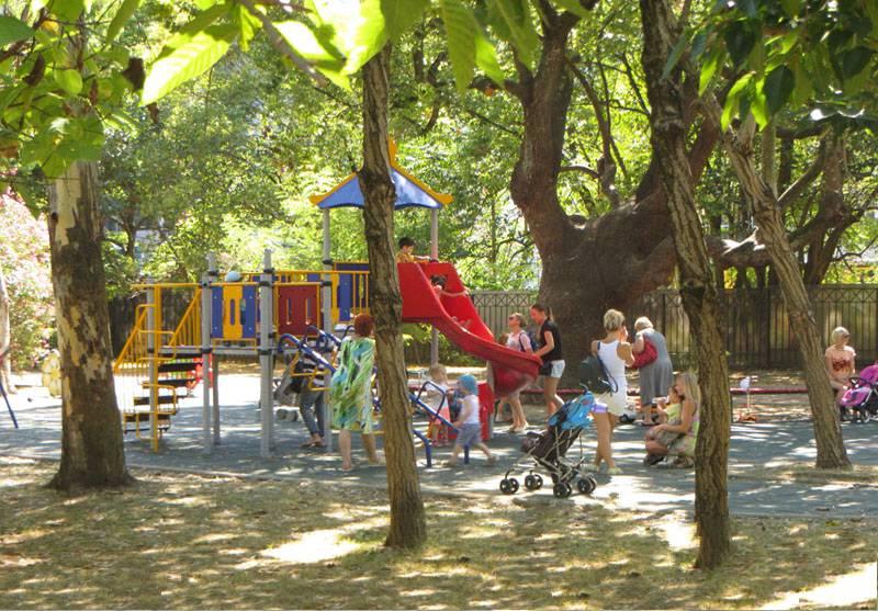 Большие Деревья на детской площадке