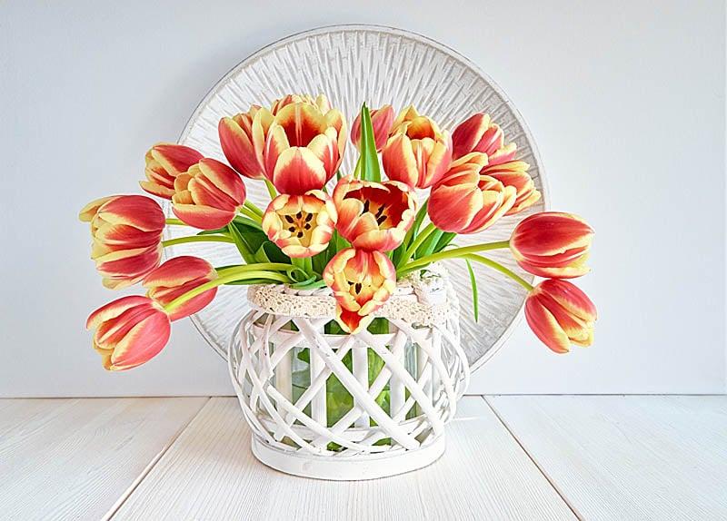 Тюльпаны - отличный подарок на 14 февраля